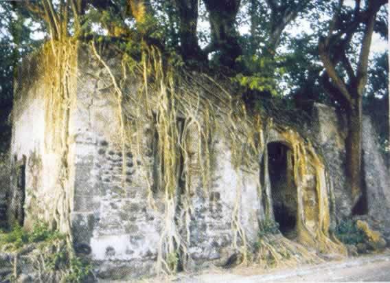 Casa De Hernán Cortés La Antigua Veracruz