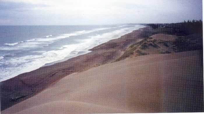 Playas De Chachalacas Veracruz